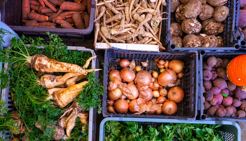 Slow Food Central Europe